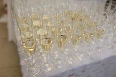 Rader av exponeringsglas med champagne som är förberedd för mottagande Arkivbild