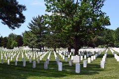 Rader av gravar på Arlington den nationella kyrkogården royaltyfria bilder