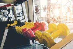 Rader av hantlar i idrottshallen Royaltyfri Foto
