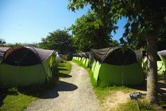 Rader av identiska tält under träd arkivbilder
