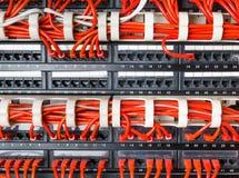 Rader av nätverkskablar förbindelse till router- och strömbrytarenavet Arkivfoto