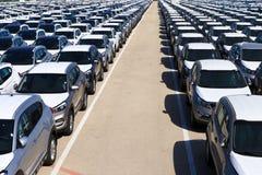 Rader av nya bilar Royaltyfria Foton