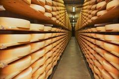 Rader av ost som mognar i en källare av en ostfabrik i Gruyeres, Schweiz arkivfoton