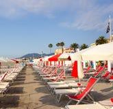 Rader av strandparaplyer och sunstolar Royaltyfria Bilder