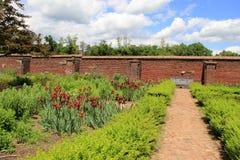 Rader av sunda blommor, konungens trädgård, fort Ticonderoga, New York, 2014 Royaltyfria Bilder