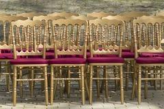 Rader av tomma stolar utan åhörare Retro stilstolar royaltyfri foto