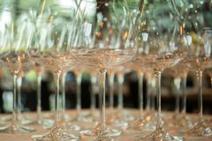 Rader av tomma vinexponeringsglas på tabellen Royaltyfria Foton