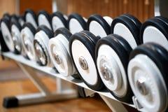 Rader av vikter på en hylla i en idrottshall royaltyfri bild