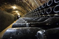 Rader av vinflaskor i källaren arkivbilder