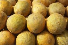 rader för fruktmarknadsmelon staplade yellow Royaltyfri Foto