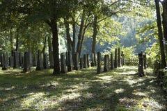 Rader med gamla gravstenar fotografering för bildbyråer