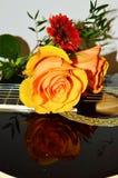Rader och blommor, symboler Arkivfoto