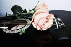 Rader och rosor, symboler Royaltyfri Bild