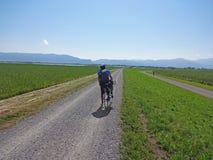 Radfahren in Österreich stockfotos