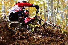 Radfahren als Extrem- und Spaßsport Abwärts radfahrend Radfahrer springt Lizenzfreie Stockfotografie