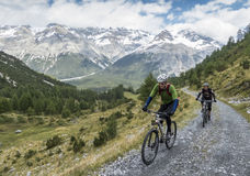 Radfahren auf mountainbikes im Hochgebirge Lizenzfreies Stockfoto