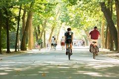 Radfahren in das Vondelpark in Amsterdam Stockfotografie