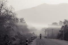 Radfahren in den Nebel lizenzfreie stockfotos