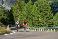 Radfahren in die Wald-gute Luft zu atmen Stockfoto