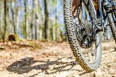 Radfahren durch den Wald stockbild