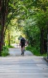 Radfahren in einen Park Stockfoto