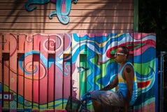 Radfahren hinter die Farben Lizenzfreies Stockfoto