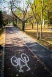 Radfahrenwege in Timisoara-Park lizenzfreie stockfotos