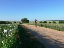 Radfahrer auf der landwirtschaftlichen Straße stockfotografie
