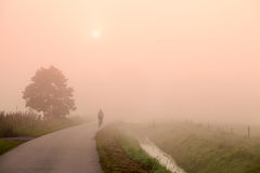 Radfahrer auf der Straße bei nebelhaftem Sonnenaufgang Lizenzfreies Stockfoto