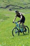 Radfahrer auf grünem Rennen Stockfotos
