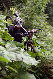 Radfahrer in den Bergen Stockbilder