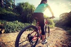Radfahrer, der ein Fahrrad auf einen Naturlehrpfad in den Bergen reitet stockfoto