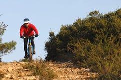 Radfahrer in der Tätigkeit Stockbilder