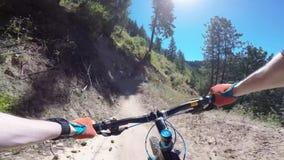 Radfahrer, die Reitmountainbike im grünen Wald am sonnigen Tag an Freund-Schlucht im ersten Gesichtspunkt pov der Person 4k radfa stock footage