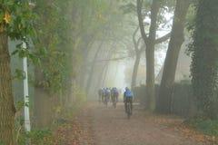 Radfahrer in einem nebelhaften Wald Stockfotos