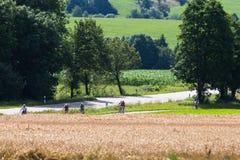 Radfahrer in einer Abstandsansicht an einem sonnigen Tag des Sommers Lizenzfreies Stockfoto
