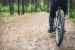Radfahrer fährt auf eine Schotterstraße im Kiefernwald Stockfoto