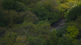Radfahrer im Central Park, Ansicht obenliegend stock footage