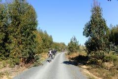 Radfahrer im Greenway Los Molinos Del Agua in Valverde Del Camino, Provinz von Huelva, Spanien Stockfotografie