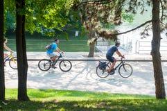 Radfahrer im Park Lizenzfreie Stockbilder