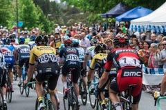 Radfahrer, Santos Tour Down Under, Stirling Lizenzfreie Stockfotos