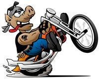 Radfahrerschwein, einen Wheelie auf einer Motorradkarikatur-Vektorillustration knallend Lizenzfreie Stockbilder