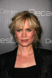 Radha Mitchell Stockbild