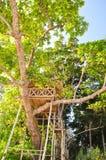 Radhanagar海滩的美丽的树上小屋在Havelock海岛-安达曼群岛,印度上 库存图片