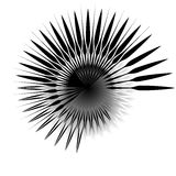 Radiaal, uitstralend lijnen Asymmetrisch geometrisch element Circula royalty-vrije illustratie