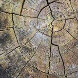 Radial Abstraction Stock Photography