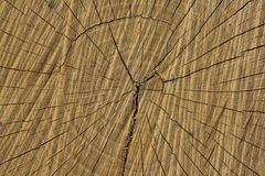 Radial cracks Stock Photos