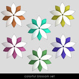 Radial lotos symetry blossoms pack. Center top view lineart illustration Stock Photography