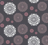 Radial pattern of plant elements. Stock Image