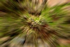 Radiale onduidelijk beeldachtergrond Stock Afbeelding